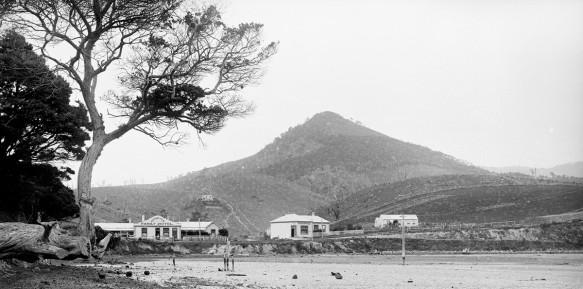Hereweka from Latham Bay