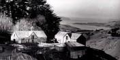 Larnach's Model farm