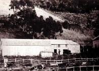 Riddells Farm