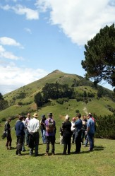 The group under the eye of Hereweka
