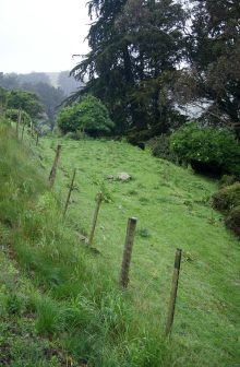 Site of the Hereweka Cheese Fact